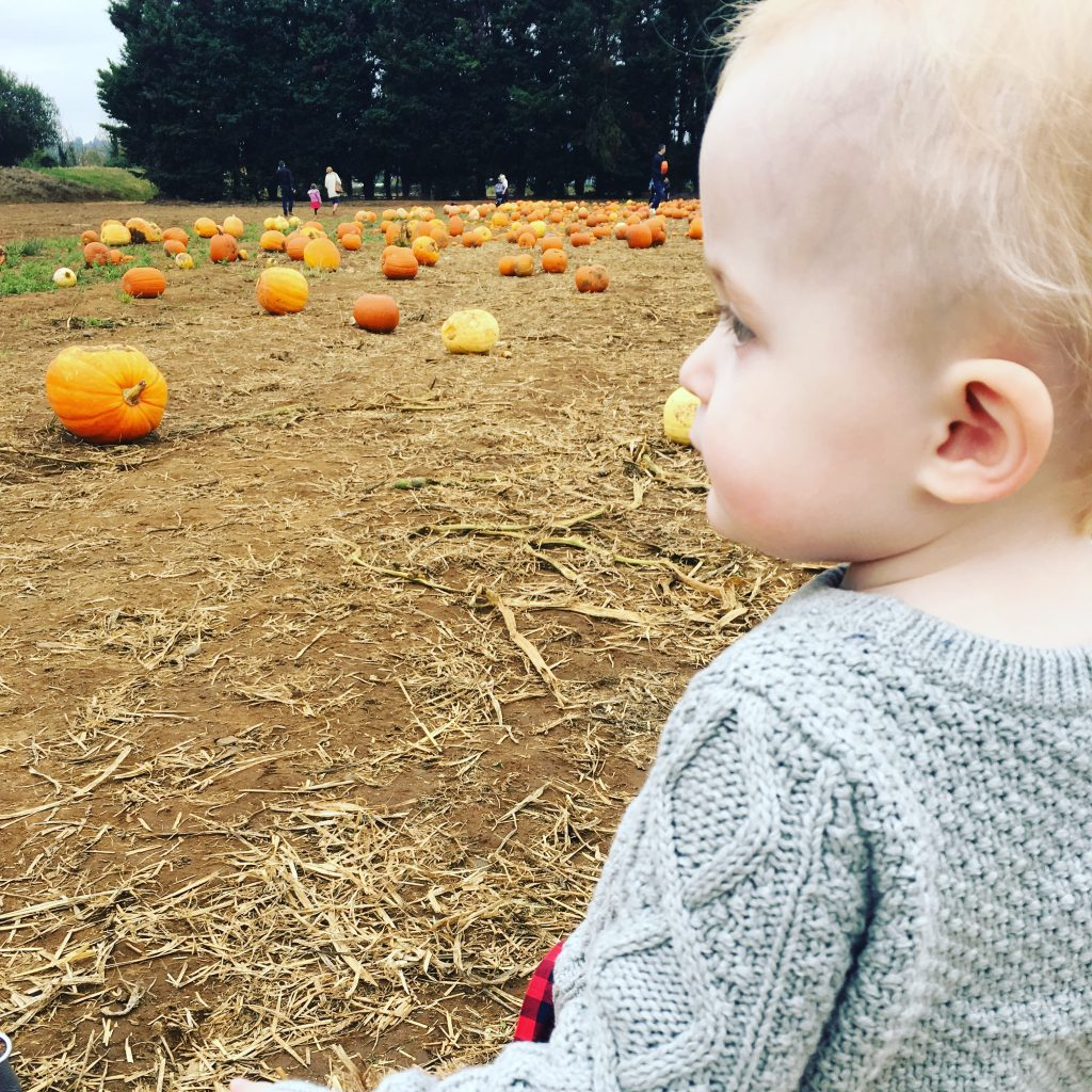 Pumpkin Patch - Ariella