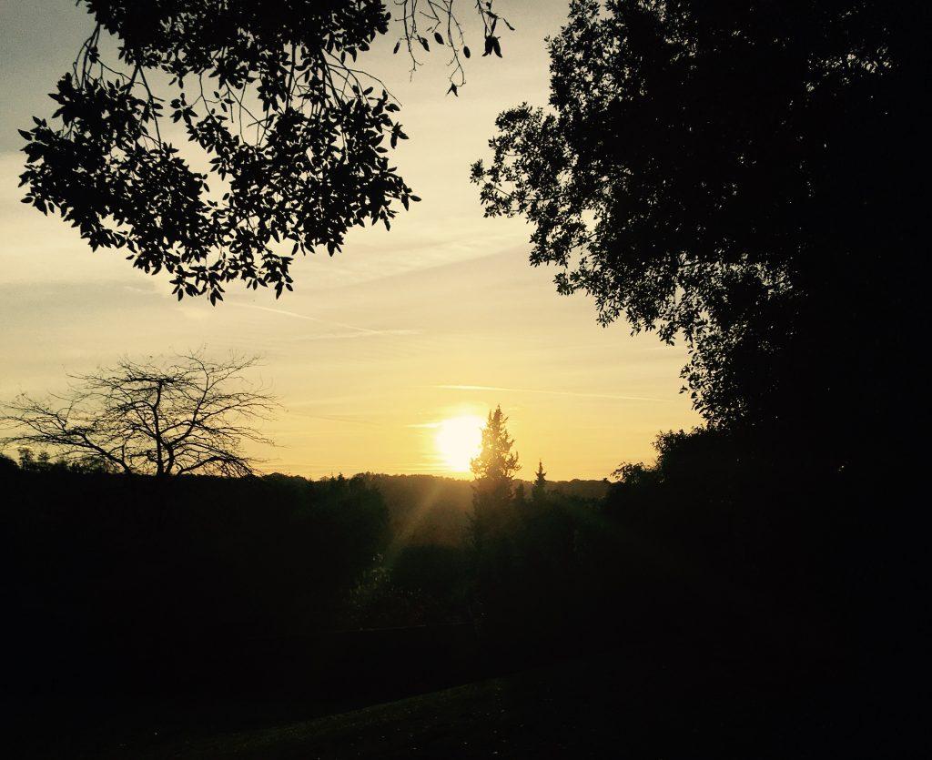 Sun in Sky - Polesden Lacey