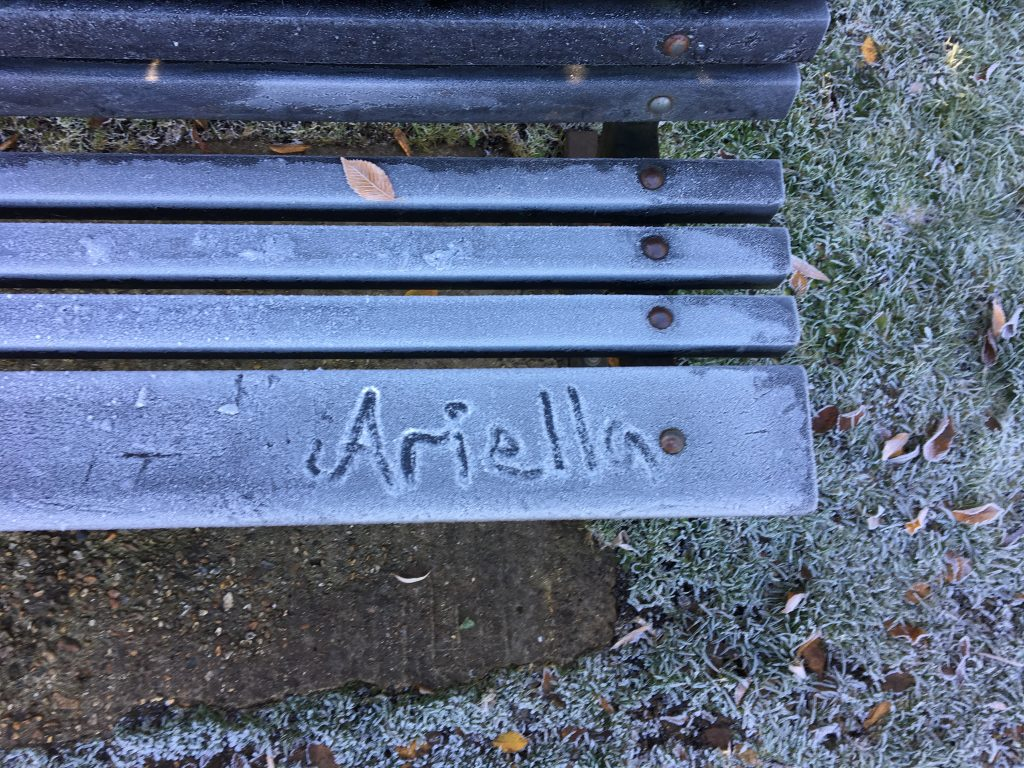 Ariella' s Name
